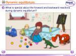 dynamic equilibrium1