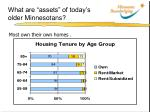 what are assets of today s older minnesotans4