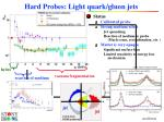hard probes light quark gluon jets