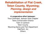 rehabilitation of flat creek teton county wyoming planning design and implementation