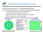 m2 and m3 cell assemblies passive