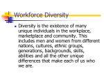 workforce diversity1