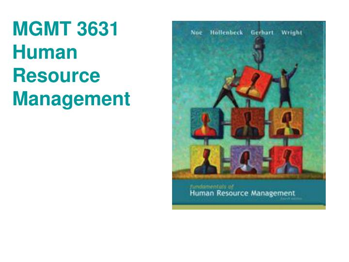 mgmt 3631 human resource management n.