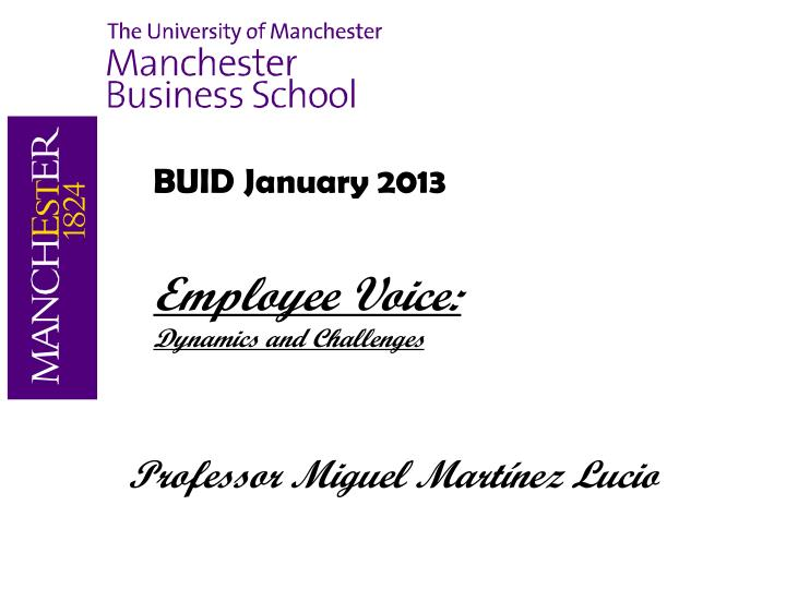 buid january 2013 employee voice dynamics and challenges n.