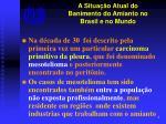 a situa o atual do banimento do amianto no brasil e no mundo5