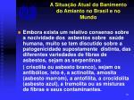 a situa o atual do banimento do amianto no brasil e no mundo6