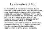 le microsfere di fox1