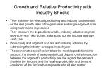 growth and relative productivity with industry shocks