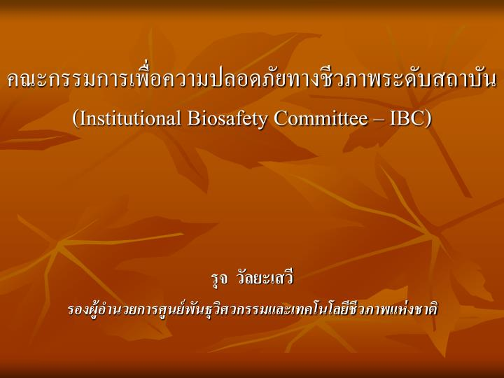 institutional biosafety committee ibc n.