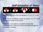 self ionization of water