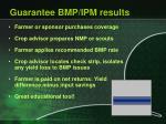 guarantee bmp ipm results