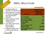 shgs micro credit