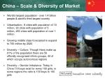 china scale diversity of market