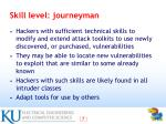 skill level journeyman