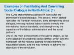 examples on f acilitating and c onvening social dialogue in north africa 1