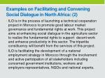 examples on facilitating and convening s ocial dialogue in north africa 2