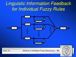 linguistic information feedback for individual fuzzy rules