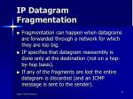 ip datagram fragmentation