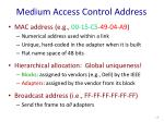 medium access control address1