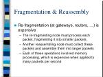 fragmentation reassembly4