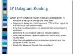 ip datagram routing