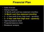 financial plan1