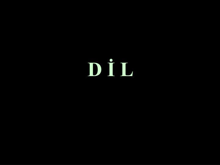 D İ L