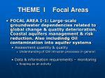 theme i focal areas