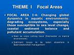 theme i focal areas3
