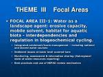 theme iii focal areas