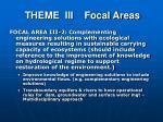theme iii focal areas1