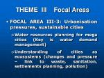 theme iii focal areas2
