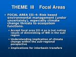 theme iii focal areas3