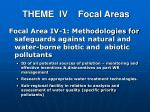 theme iv focal areas