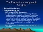 the precautionary approach principle