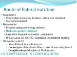 route of enteral nutrition