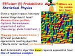 efficient probabilistic algorithms statistical physics