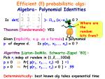 efficient probabilistic algs algebra polynomial identities
