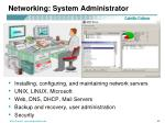 networking system administrator