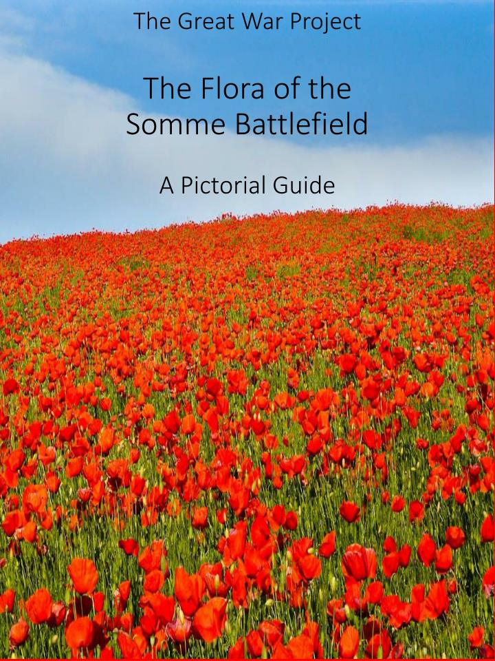 the great war project the flora of the somme battlefield a pictorial guide n.