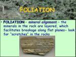 foliation