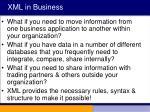 xml in business