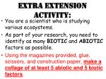 extra extension activity