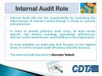 internal audit role