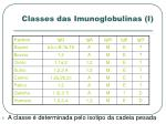 classes das imunoglobulinas i