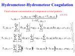 hydrometeor hydrometeor coagulation