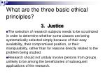 what are the three basic ethical principles2