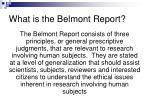 what is the belmont report