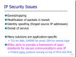ip security issues
