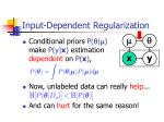 input dependent regularization